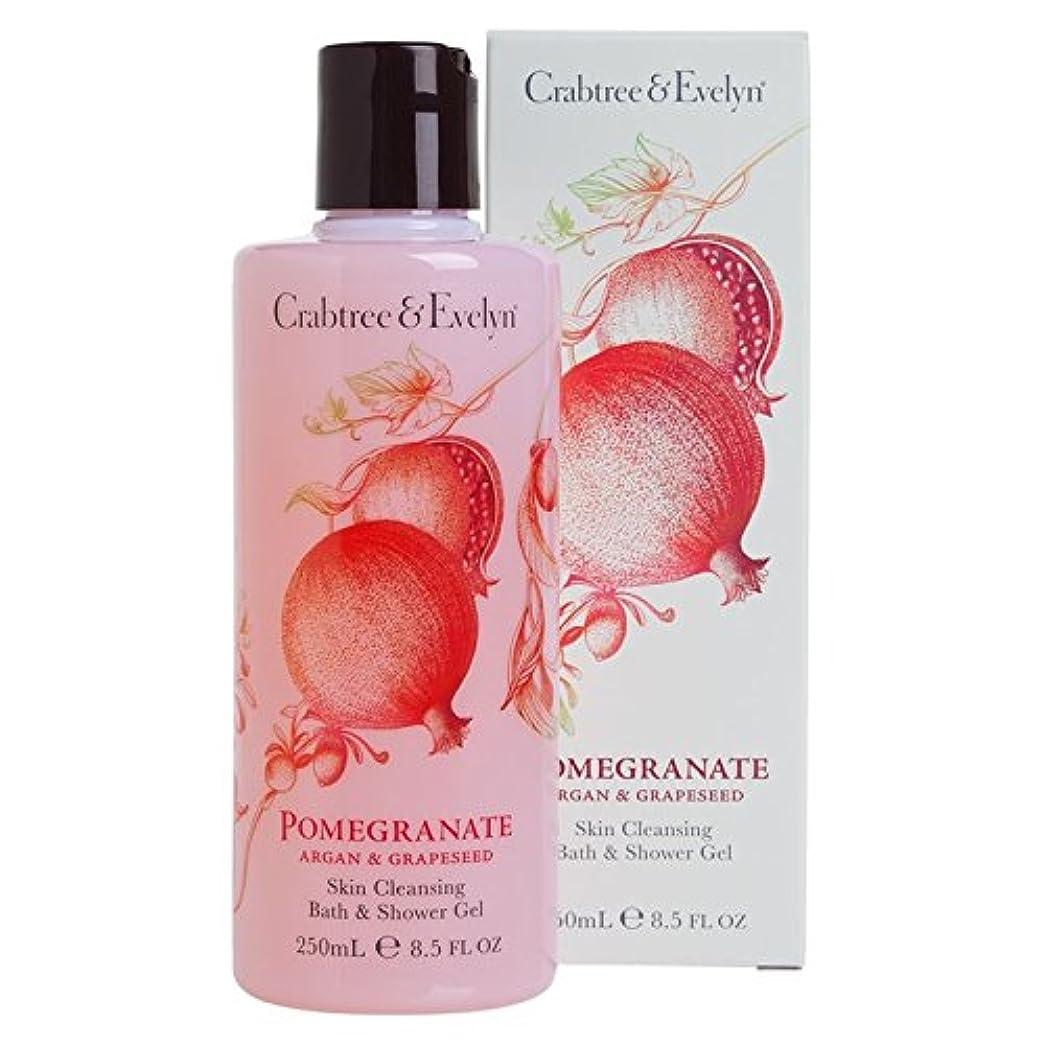 寝る重大冷凍庫クラブツリー&イヴリンザクロの皮バス&シャワージェル250ミリリットルクレンジング (Crabtree & Evelyn) (x6) - Crabtree & Evelyn Pomegranate Skin Cleansing Bath & Shower Gel 250ml (Pack of 6) [並行輸入品]