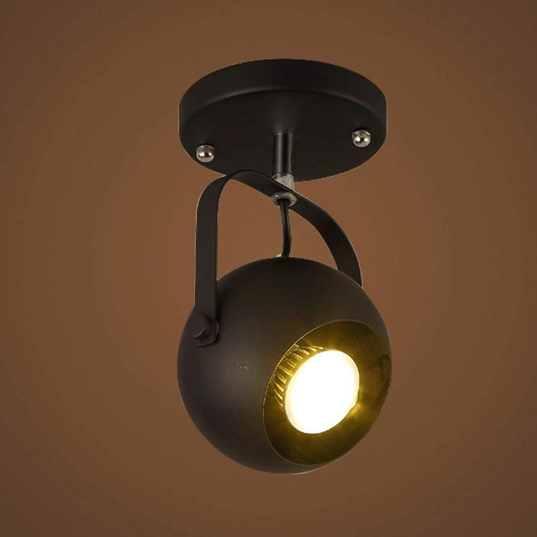 DEJ Luz de Techo Lámpara de Techo Lámpara Colgante Mate Acabado en Negro Acabado 1 Luz