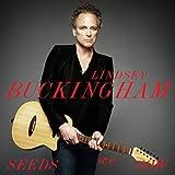 Songtexte von Lindsey Buckingham - Seeds We Sow