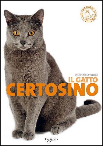 Il gatto certosino (Gatti di razza)