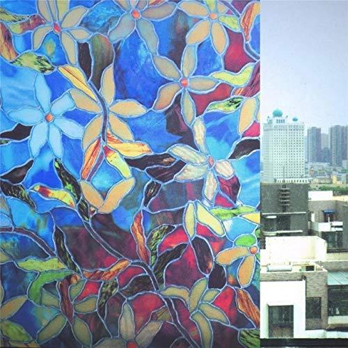 LMKJ Pegatina de Vidrio antiestática 2D, película de Vidrio para Ventana de fregado de orquídeas Coloridas, película autoadhesiva para Ventana, Adhesivo para Ventana, Adhesivo C21 60x100cm