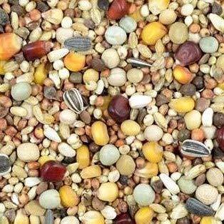 Kampol RL+ Universalfutter ohne Weizen 25 kg Taubenfutter Zucht-Reisemischung Plus