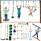 Ninja Warrior Obstacle Course para niños, 4YANG Kit de 2 x 50FT Slackline - Entrenamiento de guerrero ninja, columpio, anillos, bola de cuerda, barra de escalada, entrenamiento de equilibrio