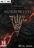 The Elder Scrolls Online: Morrowind (PC DVD) [Edizione: Regno Unito]