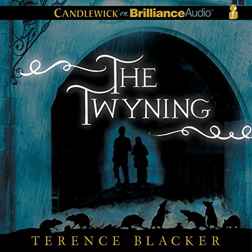The Twyning audiobook cover art