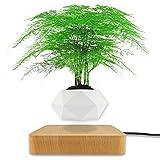 Levitating Air Bonsai Pot,Magnetic Levitation Suspension Floating Pot,Rotation Flower Pot Planters,Floating Pot Potted Plant for Home Office Desk Room Decoration (Light Wood Grain)