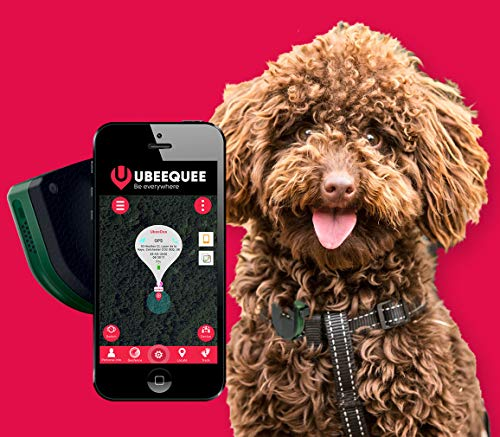 UBEE RANGER GPS tracker for dogs, robust and waterproof, unlimited range, free shareable app