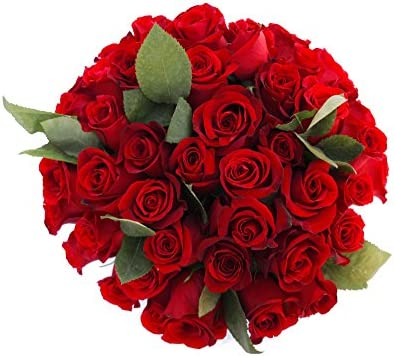100 Beautiful Farm Fresh Red Roses Bouquet By JustFreshRoses Long Stem Fresh Red Rose Delivery product image