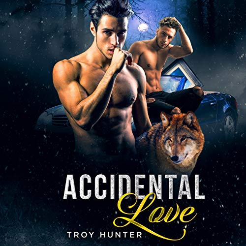Accidental Love: An MPREG Shifter Romance audiobook cover art