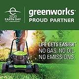 Greenworks 40 Volt Cordless