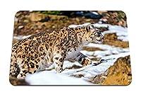 22cmx18cm マウスパッド (ユキヒョウ歩く雪岩捕食者) パターンカスタムの マウスパッド