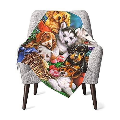 VVSADEB Manta de bebé para perros y canastas para bebés, manta de regalo suave y cálida para recién nacido, unisex, talla única (76,4 x 100,4 cm)