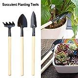 Feel-ling 3pcs / Set Mini Herramientas de jardinería, para suculentas Hierbas de Cactus Plantas de Interior en Miniatura Plántulas, Bonsai, Hierbas y plantación de aflojamiento