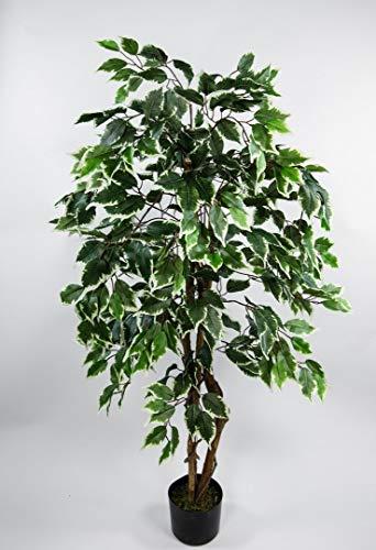 Seidenblumen Roß Ficus Excotica 120cm grün-Creme DA Kunstbaum Dekobaum Kunstpflanzen künstlicher Baum Birkenfeige