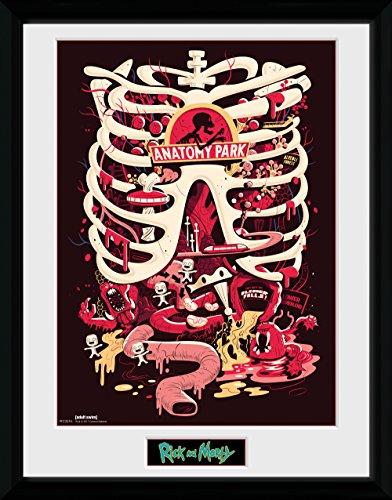 GB Eye Rick und Morty, Anatomie Park Poster, gerahmt, 30x 40cm, Verschiedene