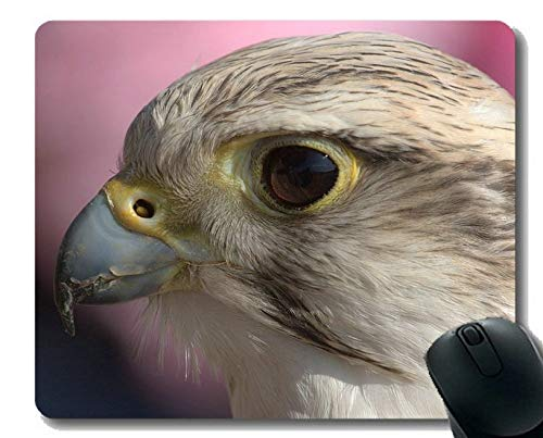 Gaming Mouse Pad Benutzerdefinierte, Predation Bird rutschfeste Gummibasis Mousepad