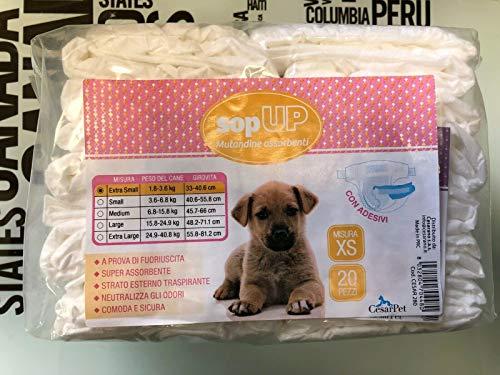 Cesarpet SOPUP - Bragas absorbentes para perros, pañales, desechables, con adhesivos (XS-para perros 1,8-3,6 kg, diámetro 33-40,6 cm - 20 unidades)