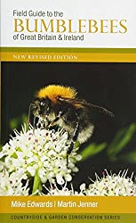 Why Do Bumblebees Bump Against Windows?