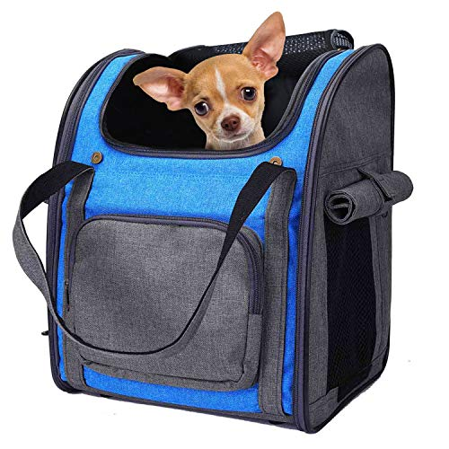 Mochila Plegable Transportin para Perro Gato Cachurro Gatito Mascota Pequeña, Transportín Portador Bolsa de Transporte Respirable Impermeable Peso de hasta 8 kg para Viaje Avión (Gris + Azul)
