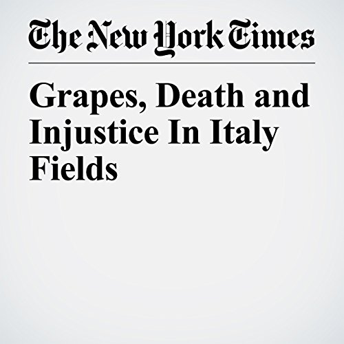 Grapes, Death and Injustice in Italy Fields copertina