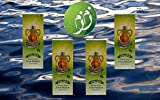 Zamzam Drinking Water 16.5 fl.oz. Pack of 4 - From Mecca Saudi Arabia - ماء زمزم من مكة المكرمة 4 عبوات