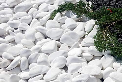 VELLES Kleine Steine zum Bemalen & Garten Kieselsteine Weiße Kies Dekosteine Naturstein Marmorkies Zierkies Kiesel für Gartendeko Stein Aquarium Dekokies Deko Steine 20-40 mm