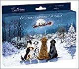Treats For Your Dog Traditional Advent Calendar - 24 Door Pet Christmas Novelty Gift