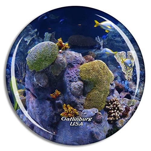 Weekino USA Amerika Gatlinburg Ripleys Aquarium der Smokies Kühlschrankmagnet 3D Kristallglas Touristische Stadtreise City Souvenir Collection Geschenk Starker Kühlschrank Aufkleber