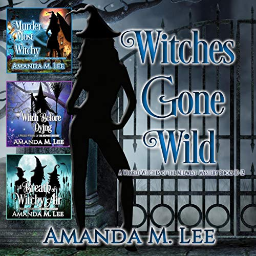 Witches Gone Wild audiobook cover art