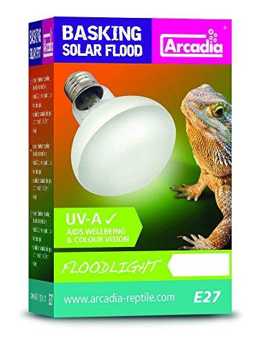 Arcadia sbf100Basking Solar lámpara UVA Floodlight