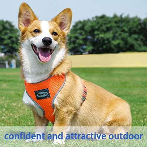ThinkPet No-Pull Hundegeschirr - Atmungsaktiv Vest Geschirr Mesh Brustgeschirr für Hunde, reflektierend Verstellbare Softgeschirr Sicher Kontrolle, Geringes Eigengewicht, Leichtes Anlegen - 3