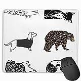Animal Plush Pillows Custom Black and White Fox Bear Hedgehog Gator Panda Dachshund Blanco y Negro N...