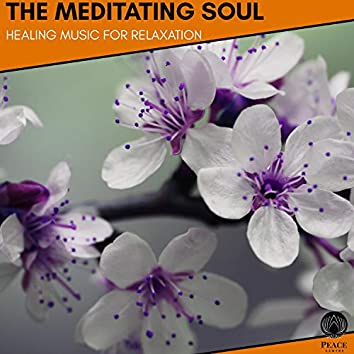 The Meditating Soul - Healing Music For Relaxation