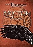 Brictom - Wodans Götterlied. Von keltischer Götterdämmerung 3: Historische Fantasy