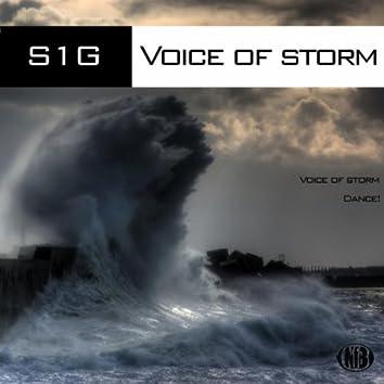 Voice of Storm