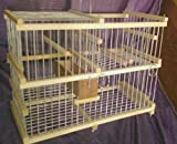 Repeating Trap Cage for Birds // Catch Birds Softly