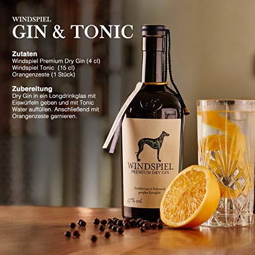 Windspiel Premium Dry Gin 47 % vol. 1 x 0,5 Liter - International ausgezeichneter London Dry Gin aus der deutschen Vulkaneifel - 5