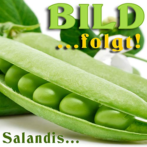 Sala Aloe Vera Extrakt 200:1 Pulver 10 g
