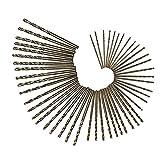 Yoyakie 50pcs 1.0-3.0mm Hss Brocas Conjunto De Oro bits Fresa Espiral De Acero Inoxidable Y Cobre Hierro Hierro Fundido