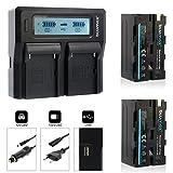 Blumax 2X Akku ersetzt Sony NP-F750 4000mAh + Doppel Dual Ladegerät | kompatibel mit Sony NPF750 NP-F550 NP-F970 NP-F990 || 2 Akkus Laden für Blitzgeräte Videoleuchten Fieldmonitore
