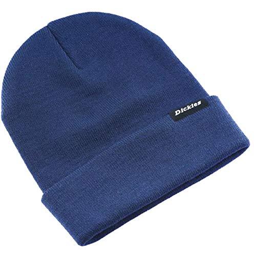Dickies Herren Alaska Beanie Hat Strickmütze, Blau (Navy Blue Nv0), One Size (Herstellergröße: OS)