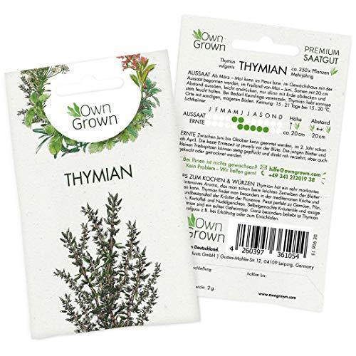 OwnGrown Premium Thymian Samen mehrjährig (Thymus vulgaris), Thymiansamen winterhart, Saatgut für rund 250 Thymian Pflanzen