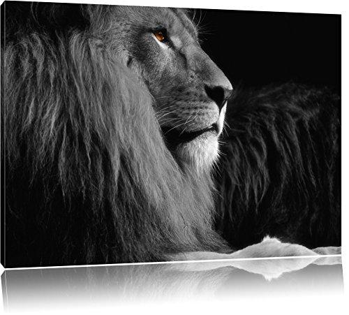 Dark wunderschöner stolzer Löwe schwarz/weiß Format: 120x80auf Leinwand, XXL riesige Bilder fertig gerahmt mit Keilrahmen, Kunstdruck auf Wandbild mit Rahmen, günstiger als Gemälde oder Ölbild, kein Poster oder Plakat