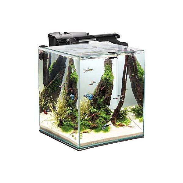 Aquael Fish & Shrimp Set Duo 49 Liter Black