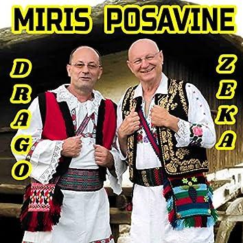 Moja Bosna, moj zavicaj