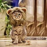 MEWTOGO-おしゃれ 猫用帽子 ボールが付き 猫 かぶりもの らいおんたてがみ 猫 ぼうし コスプレキャップ ライオンに大変身 ペット用帽子 ペット用服 猫服 可愛さ100倍 耳付き 着脱簡単 マジックテープ付き(M+ball)