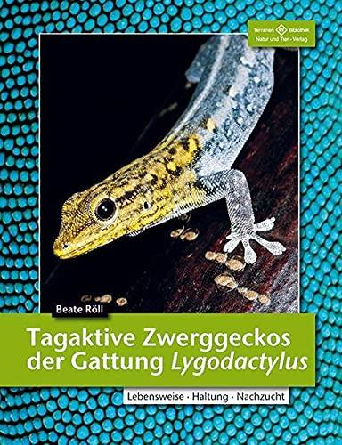 Tagaktive Zwerggeckos der Gattung Lygodactylus: Lebensweise, Haltung, Nachzucht (Terrarien-Bibliothek)