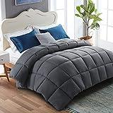 WARM HARBOR King Size Reversible Down Alternative Quilted Comforter, All Season Duvet Insert Fluffy Lightweight Bed Comforters with Corner Tabs Darkgrey