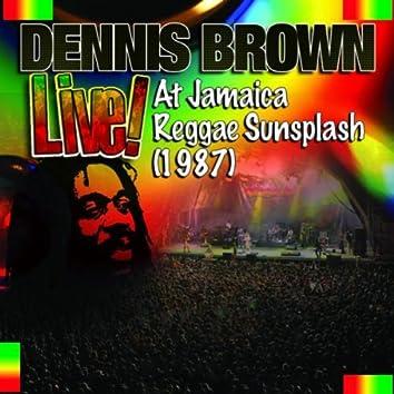 Live! At Jamaica Reggae Sunsplash (1987)