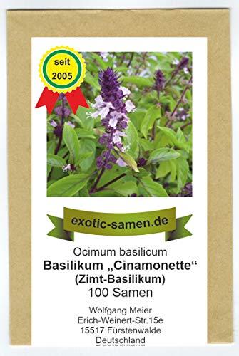 Ocimum basilicum Basilikum